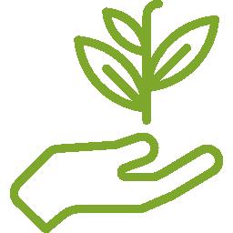 Green Vision Icon